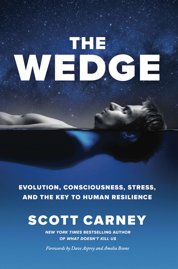 The Wedge By Scott Carney